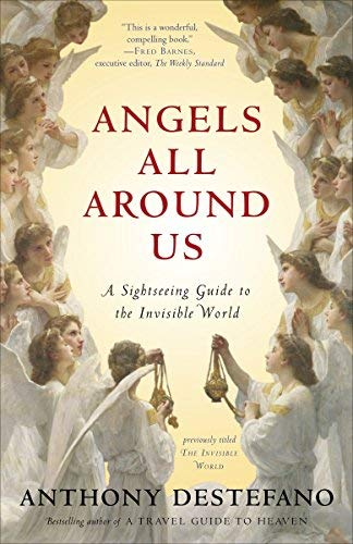Angels All Around Us: A Sightseeing Guide to the Invisible World by DeStefano, Anthony [Paperback(2012/10/16)]