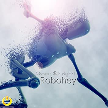 Robohey (with Funky S3T)