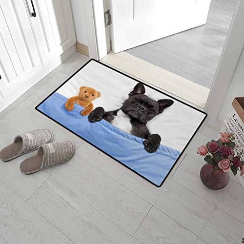 Leigh R. Avans Front Door Mat Animal Outdoor Mats for Front Door French Bulldog Sleeping with Teddy Bear in Cozy Bed Best Friends Fun Dreams Image 24' x 47' Multicolor