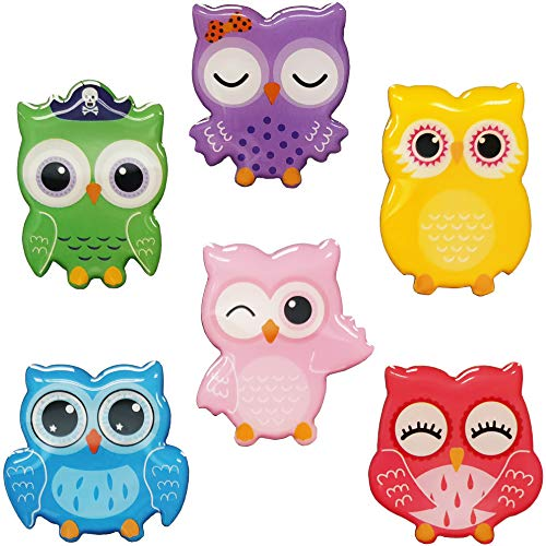 Colorful Owl Refrigerator Magnets