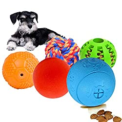 Top 5 Puzzle toys that Will Challenge Your Dog's Mind |