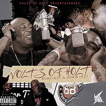 Voltz Of Holt