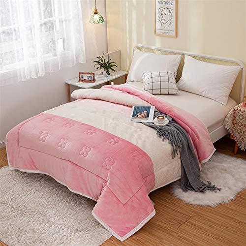 LJHSS Kuscheldecke Flauschige Decke, extra Dicke warm Sofadecke, Upgrade Flanell Weiche sofadecke, Fleecedecke, Mikrofaser Wohndecke - Pflegeleicht - Warm, Gemütlich, Langlebig