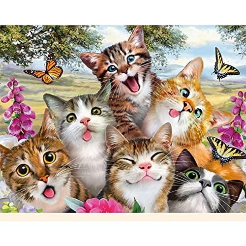 5D Diy Kits De Pintura De Diamantes Suqare Completo Gato C Oon Diamante Animal Mosaico Costura Decoración Del Hogar Arte De Punto De Cruz Redondo 40X50Cm