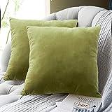 FRECINQ Fundas Cojines 45x45cm Cojines Sofa 2 Piezas Velvet Suave Funda de Almohada para el Sofa Sillas Jardín Decoración Coche Sala de Estar(oliva verde)