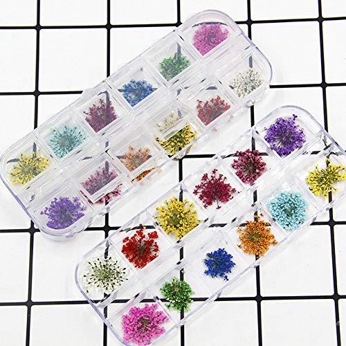 JERALD GATES Nagelgetrocknete Blume DIY getrocknete Blumendekoration getrocknetes Blumenmaterial 4 Pack