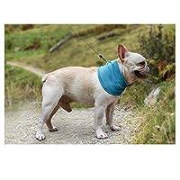 Whinopネッククーラー 調節可能 ペット用冷感首輪 ソフト 冷却スカーフ 熱中症 暑さ対策 首 冷やす グッズ 首 冷却 涼感ボーダー クーラー 保冷剤 クール クーラーバッグ