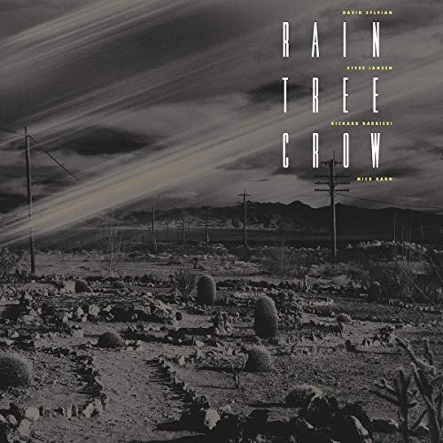 Rain Tree Crow [VINYL]