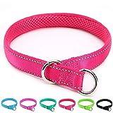 Mycicy Collar de estrangulamiento Reflectante para Perros, Collar de Entrenamiento de Nailon Suave para Perros (1' W x 22' L, Rosa Rojo)