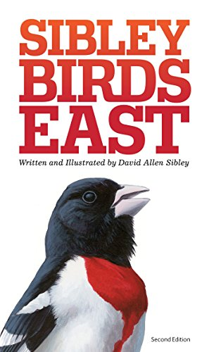 The Sibley Field Guide to Birds of Eastern North America: Second Edition Sibley Guides
