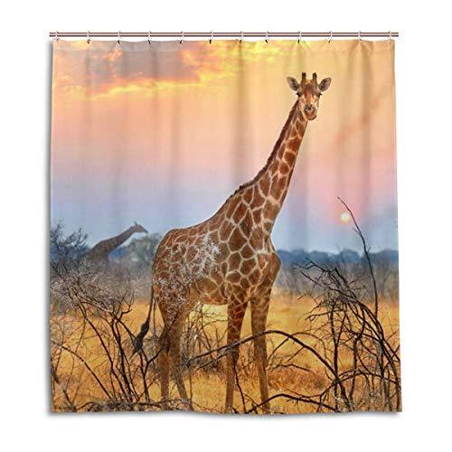 CPYang Duschvorhänge Afrikanische Wildtiere Tiere Giraffe Wasserdicht Schimmelresistent Badevorhang Badezimmer Home Decor 168 x 182 cm mit 12 Haken