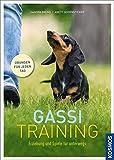 Gassi-Training: Erziehung und Spiele für unterwegs