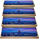 Cityscape 13-Pack Non-Slip Carpet Stair Treads Set,Empire State Building at Night,Soft Stair Mat Rotection Kids, Elders, and Dogs Safety