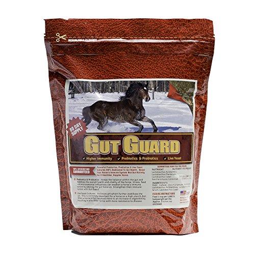 Horse Guard Gut Guard