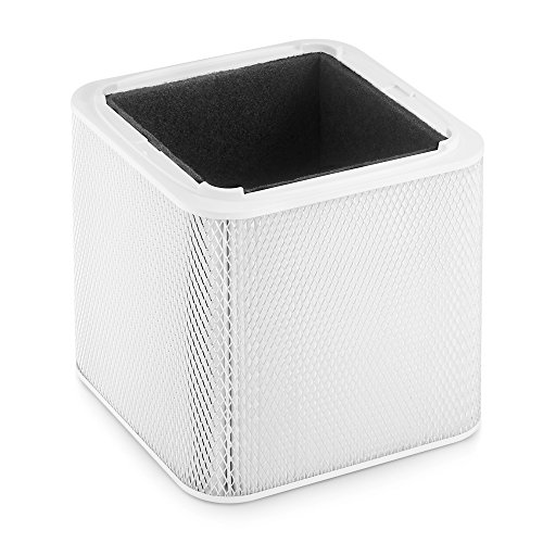 Blueair Blue 211 Particle and Carbon Replacement Filter, NOT Foldable