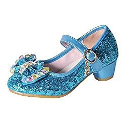 Y-Blue Mary Jane Low Heels Shoes