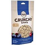 NUTRO Crunchy Natural Dog Treats with Real Mixed Berries, 10 oz. Bag