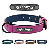 Didog <span class='highlight'>Soft</span> Leather Padded Custom Dog Collar with Personalized Nameplate and D Ring, Engraved Dog <span class='highlight'>Collars</span> for Small Medium Large Dogs,Purple,M