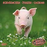 Piggies 2017: Kalender 2017 (Artwork Edition)