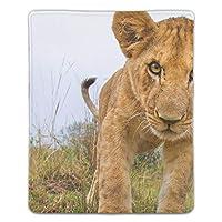 マウスパッド 野生動物ライオン陸上動物哺乳類カブ 滑り止め 防水 PC ラップトップ 水洗い レーザー 光学式 18*22cm
