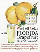フロリダグレープフルーツ1920メタルポスターウォールプラーク レトロな家の壁の装飾錫金属ギフト装飾ヴィンテージプラーク