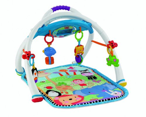 worst baby toys - Fisher Price Deluxe Apptivity Gym