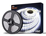 Murphy 25W LED Strip 2835 Cove Light 5 Metre (Cool White, Pack of 1) with Driver