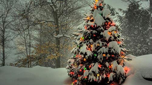 LJJSIFK Pintura de Bricolaje por números para Adultos, Kit de Pintura por número sobre Lienzo para Principiantes, Guirnalda de árboles, decoración del hogar, 16 x 20 Pulgadas (sin Marco)