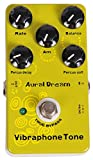 Immagine 1 aural dream vibraphone tone synthesizer