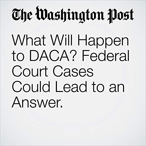 What Will Happen to DACA? Federal Court Cases Could Lead to an Answer. copertina