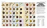 Zoom IMG-2 la scienza delle spezie scopri