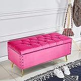Banco de extremo de la cama con almacenamiento, entrada a la sala de estar, cómodo reposapiés tapizado, banco de zapatos, lujoso banco de almacenamiento otomano de terciopelo con patas de metal en azu