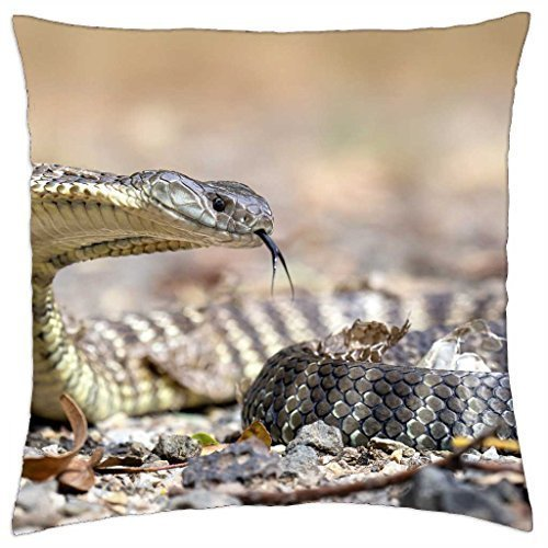Desconocido Snake with Tongue out - Throw Pillow Cover Case,Size:16 x 16 Inches