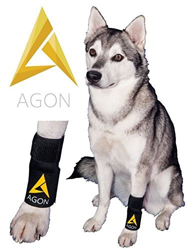 Agon Dog Canine Front Leg Brace Paw Compression Wraps With Protects Wounds Brace Heals and Prevents...