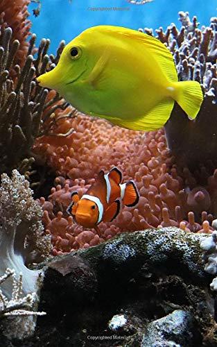 Notebook: Anemone Fish Underwater Clown Fish Aquarium Ocean Reef