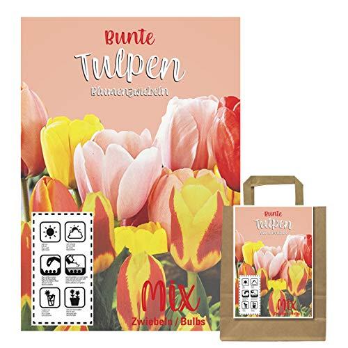 Verschiedene Blumenzwiebeln in Geschenkverpackung - Zwiebeln, Knollen verschiedener winterharter Pflanzen für Garten und Balkon - bunt, mehrjährig, für Topf und Beet (100 Tulpen 50 Gelb,50 Rot)
