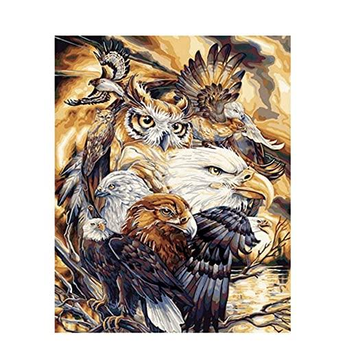 Xpboao Pintar por números - Animales búho y águila. - Pintura de Arte Moderno - Kit de Pintura de Bricolaje Adecuado para Adultos y Principiantes - 40x50cm - Sin Marco