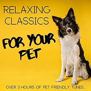 Relaxing Classics for Your Pet: Over 3 Hours of Pet Friendly Tunes...
