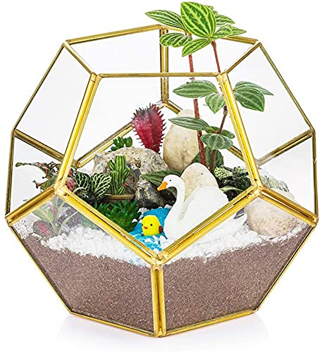 HLONGG Glass Gold Ecosystem Geometric Flowerpot Mini Greenhouse Bonsai Carving Plant Led Candle Decoration Airplane Modern Planter Succulent Artificial Moos Insect,Gold