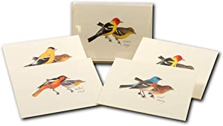 Earth Sky + Water - Peterson Western Bird Assortment Notecard Set - 8 Blank Cards with Envelopes (2 each of 4 styles)