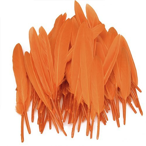 EXOH DIY Teints Plumes d'oie Lily Orange