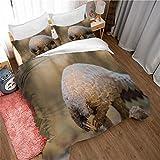 Qiuka® Niños Funda Nórdica,260x220cm Armadillo Pangolín Animal Amarillo Juego de Cama Niña y Niños Microfibra Funda de Edredón + Fundas de Almohada Y Cremallera Estampado con 3D