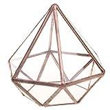Hellery Transparentes fünfeckiges Dodekaeder Glas, Terrarium, Schmuck Organizer, auch für Sukkulenten - L