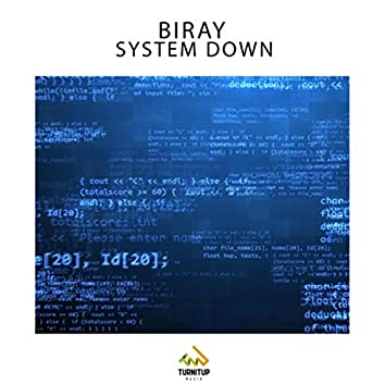 System Down