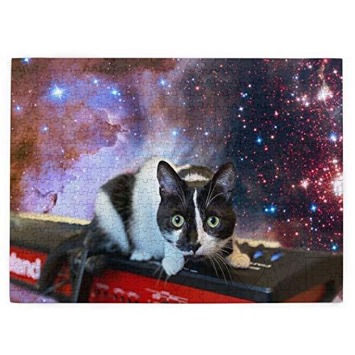 DOWNN Rompecabezas 3d para adultos y adolescentes 520 piezas rompecabezas espacial gato estrellas instrumentos musicales juguetes educativos DIY regalo para diversión juego y amor