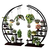 5 Tier Metal Plant Stand Creative Half Moon Shape Ladder Flower Pot Stand Rack for Home Patio Lawn Garden Balcony Holder Black (2 Pack Moon)