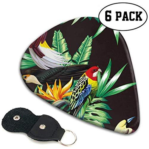 Tropische dieren Vogels Papegaai Macaw En Toekan Op Kostuum Gitaar Picks Houder 6 Pack Zwaare, Elektrische Akoestische Gitaren