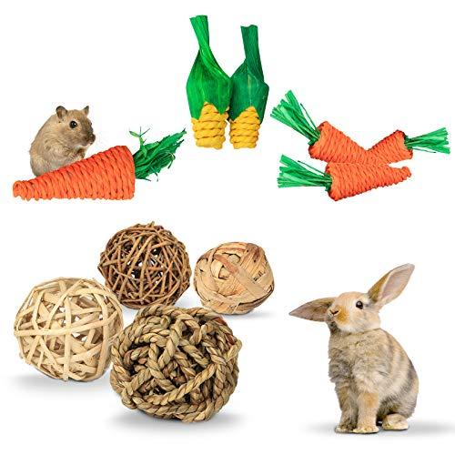 Jouets de cochon d'Inde, jouets de carotte à mâcher pour hamster, 11 pièces jouets de hamster pour les soins dentaires, jouets pour petits animaux, balle en rotin naturel, boule d'herbe à mâcher