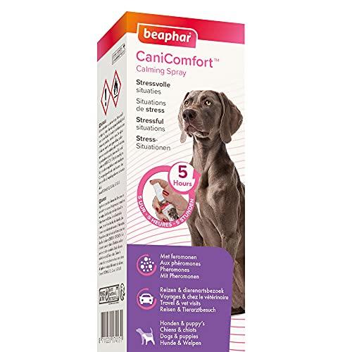beaphar CaniComfort Wohlfühl-Spray, Beruhigungsmittel für Hunde mit Pheromonen, 60 ml
