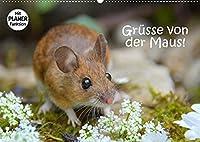 Gruesse von der Maus! (Wandkalender 2022 DIN A2 quer): Zauberhafte Bilder einer kleinen Maus! (Geburtstagskalender, 14 Seiten )